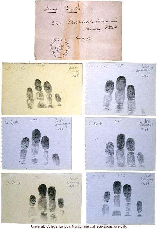 Francis Galton's fingerprint cards of Jewish males, Tavistock ...