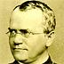 Gallery 2: Gregor Mendel, 1880