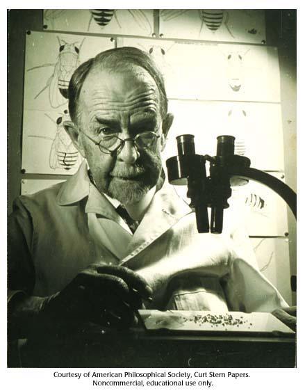 Thomas Hunt Morgan, 1945 :: CSHL DNA Learning Center